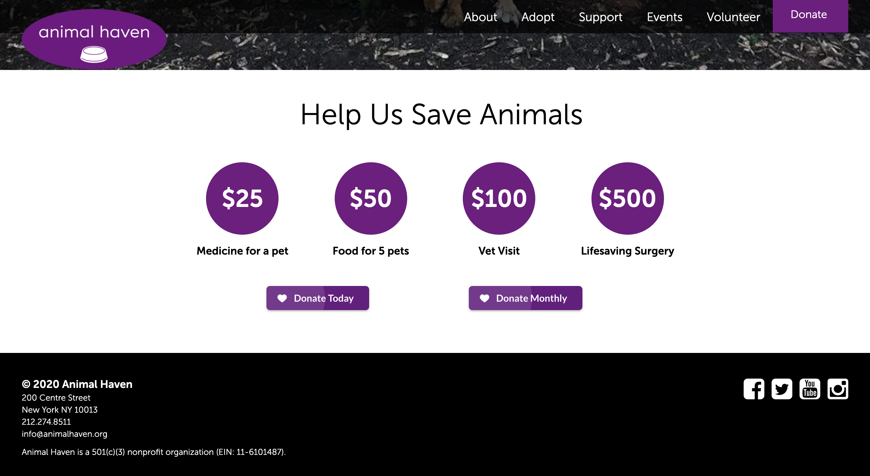 several donation options on nonprofit homepage